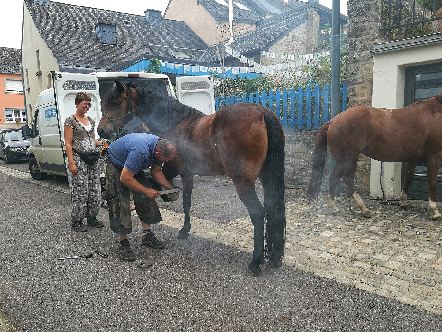 shoeing horses in Luxembourg