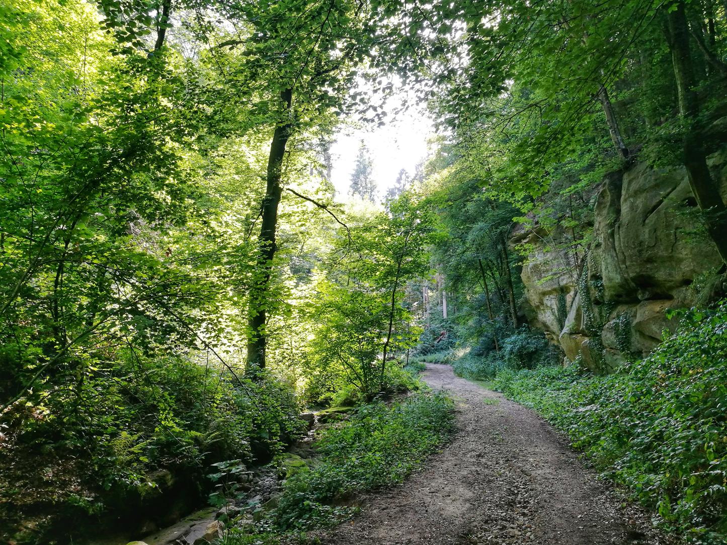 Consdorf, Luxembourg